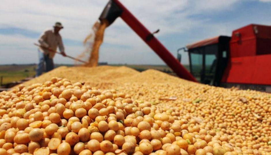 Viento de cola: la disparada de la soja generará casi USD 10.000 millones extra en exportaciones y USD 2.800 millones más en pagos de retenciones