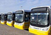 Nación destinará $8.000 millones más en subsidios al transporte automotor del interior