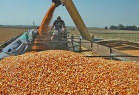 El campo comienza a definir las protestas para rechazar el cierre de las exportaciones de maíz