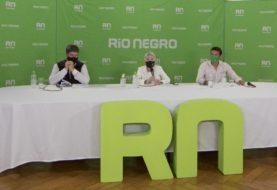 Mortandad de loros barranqueros en Río Negro: confirman que es por falta de alimentos y no por intoxicación