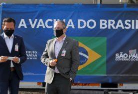 Más de 2 millones de casos  - Coronavirus en Brasil: el estado de San Pablo decretó el toque de queda por dos semanas