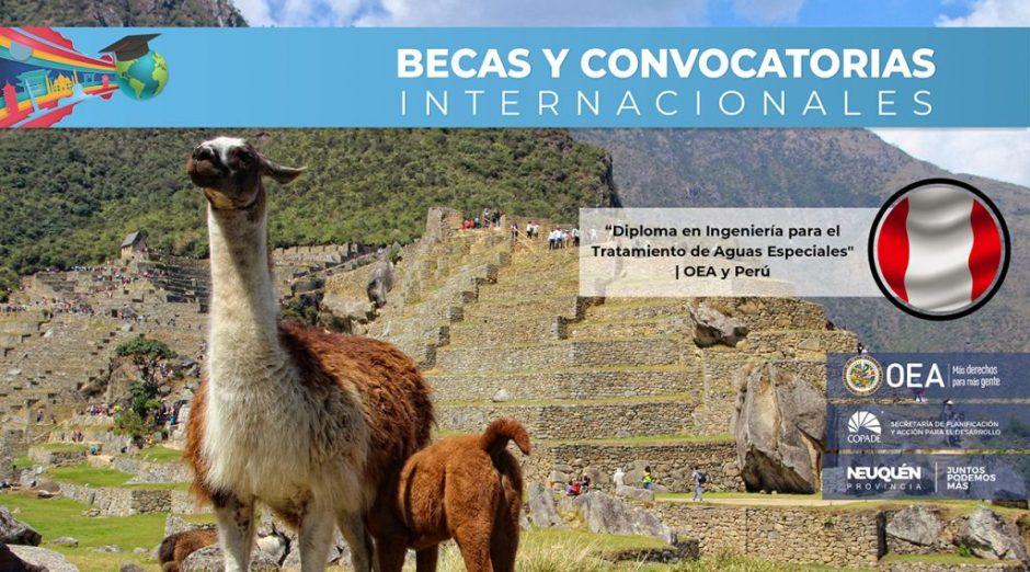 """""""Diploma en Ingeniería para el Tratamiento de Aguas Especiales» OEA y Perú"""