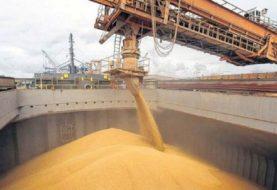 Granos: en primer bimestre saltaron las declaraciones de exportaciones