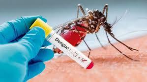 Reportan los primeros dos casos importados de dengue en Jujuy