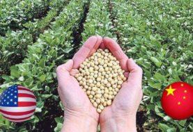 La demanda china de soja abre una oportunidad: ¿Y si EE.UU. compra en Argentina?