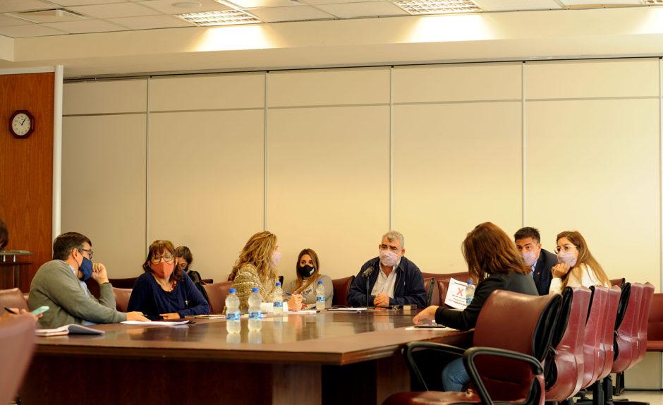 Los legisladores neuquinos analizan el proyecto de ley de carrera profesional para el Sistema Público de Salud