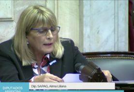 La diputada nacional Alma Sapag involucró a La Cámpora con los hechos de violencia en Neuquén y cuestionó a Parrilli por «lavarse las manos»