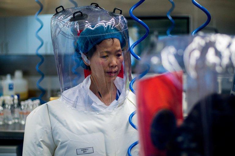 Nuevas investigaciones señalan que el Covid escapó de un laboratorio en Wuhan