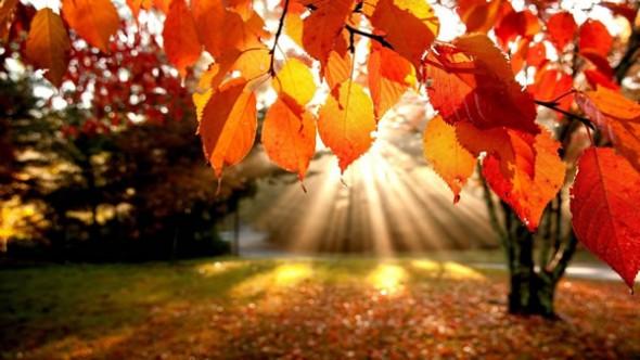 El frío sigue por la mañana, pero a la tarde el sol levanta la temperatura
