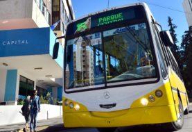 Elecciones Neuquén: este domingo habrá transporte público gratuito para todos los vecinos y vecinas