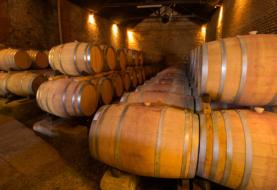 Invierno en el Valle: necesitás sabores y tranquilidad, necesitás los Caminos del Vino de Río Negro