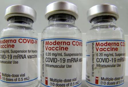 Moderna anunció que su vacuna es eficaz contra el COVID en niños de 6 a 11 años